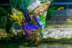 Free Bag Full Of Plastic Coming Out Of The Water, Plastic Pollution, Environment Awareness Royalty Free Stock Images - 160675199