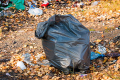 Bag of garbage in the woods Stock Photography