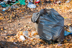 Bag of garbage in the woods Stock Image