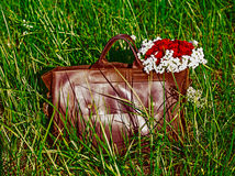 Bag on green grass. Bag and flowers at green grass Royalty Free Stock Images