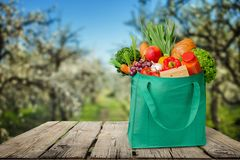 Bag. Groceries Recycling Environment reusable Green Canvas Royalty Free Stock Photos