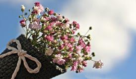 Bag Gypsofilia Seeds, Gypsophila Royalty Free Stock Images