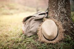 Bag and hat. Under the tree Royalty Free Stock Image