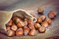 Bag of hazelnuts on wooden table Royalty Free Stock Photos