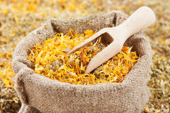 Bag of healing herbs (marigold) and wooden scoop Stock Photos