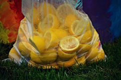 Bag of Lemon Peels. A bag of lemon peels sitting in the grass after being used to make lemonade royalty free stock image