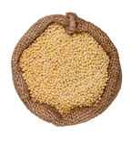 Bag millet Stock Image