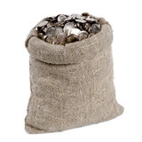 Bag of money. Isolated on white royalty free stock image