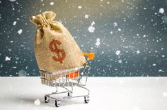 A bag of money in a supermarket trolley. Christmas promotions. Gift certificate for purchase. Contribution and investment. Cashback. Promotion at purchase royalty free stock photos