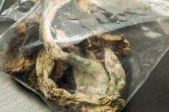 Bag of mushrooms Stock Photo