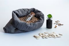 In a bag of natural flax filled with seeds of plants is a glass jar for storing seeds. Next to the bag is a green young sprout in royalty free stock image