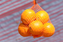A bag of oranges hanging in net at food stall Stock Image