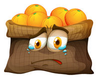 Bag of oranges with sad face Royalty Free Stock Image