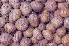 A bag of raw and dirty potatoes. Fresh potatoes close-up in a grid Royalty Free Stock Photography