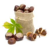 Bag with ripe chestnuts and leaves on a white Royalty Free Stock Photo