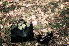 Bag and rose Royalty Free Stock Photography