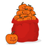 Bag scary pumpkins for Halloween. Full sack of vegetables for te Stock Photography