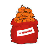 Bag scary pumpkins for Halloween. Full sack of vegetables for te Royalty Free Stock Image