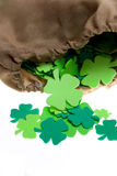 Bag of Shamrocks on White Stock Images