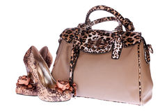 Bag and Shoes Stock Photo