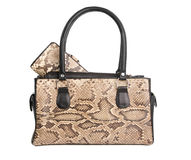 Bag from a skin of python Stock Images