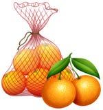 A bag of tangerine. Illustration vector illustration