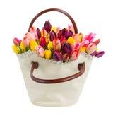 Bag  of tulips flowers Stock Image