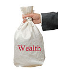 Bag with wealth. In hand Royalty Free Stock Photos
