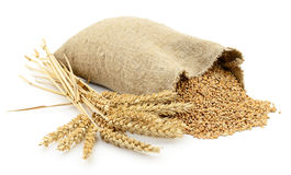 Bag of wheat. Royalty Free Stock Photography