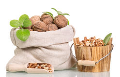 Bag with whole walnuts, peeled in  bucket and scoop isolated. Stock Photography