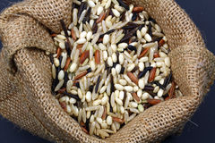 Bag of wild rice Stock Image