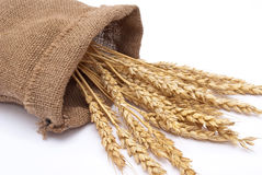 Bag With Wheat Ears Stock Image