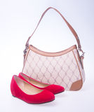 bag. women bag and fashion shoe on a background. Royalty Free Stock Photos