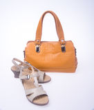 bag. women bag and fashion shoe on a background. Stock Image