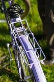Bagażu przewoźnik Fotografia Stock