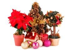 A baga do azevinho floresce, árvore de Natal e decoração Fotos de Stock Royalty Free