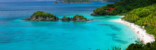 Bagażnik zatoka na St John wyspie, USA Dziewicze wyspy Zdjęcie Stock