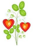 Baga vermelha na forma do cora??o Morango doce madura O presente está no amor com dia do Valentim s Ilustra??o do vetor ilustração do vetor