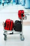 bagage Royaltyfria Foton