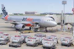 Bagagelastbilar och Jetstar flygplan på den Brisbane flygplatsen Fotografering för Bildbyråer