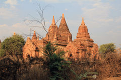 Bagan寺庙在日落的 图库摄影