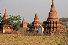 Bagan寺庙在日落3的 库存图片