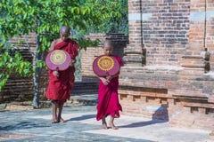 bagan缅甸的新手修士 库存照片