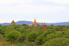 Bagan考古学区域全景,缅甸 库存图片
