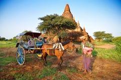 Bagan,缅甸- 2013年10月9日:有小马推车的缅甸人在Bagan 免版税库存照片