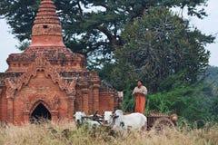 有草稿的鞔具的,缅甸缅甸妇女 图库摄影