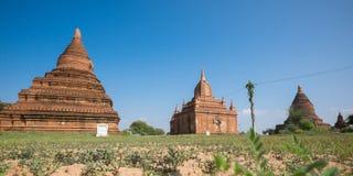 bagan ναοί της Myanmar Στοκ εικόνα με δικαίωμα ελεύθερης χρήσης