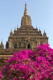 Bagan -缅甸 库存照片
