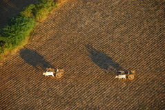 Bagan agriculture from bird's-eye view Stock Images