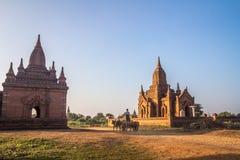 Bagan Birma Zdjęcie Royalty Free